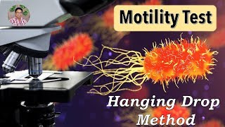 Bacterial Identification Tests: Motility Test (Hanging drop method)