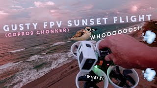 Had2Fly - Beautiful sunset FPV Flight ???? #beatsandfpv