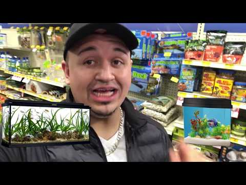 GOLD FISH WATER! DINGLE HOPPERZ GOT NEW FAMILY PETS! SECRET LIFE OF PET SHOPPING! VLOG!