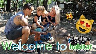 Wildlife Habitat Port Douglas || Park Promo Video