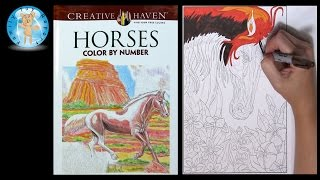 Creative Haven Horses Adult Coloring Book Color By Number