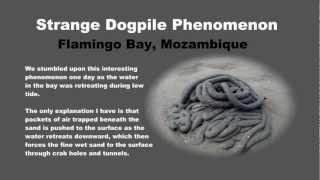 preview picture of video 'Strange Natural Phenomenon [Flamingo Bay, Mozambique]'