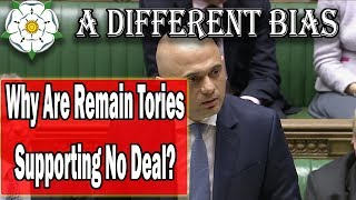 Why Are Remainer MPs Supporting No Deal Brexit?