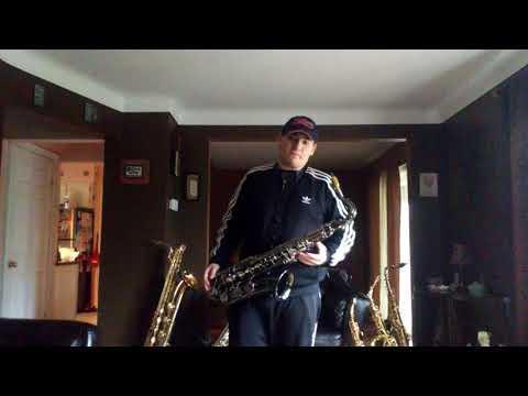 Mendini saxophone review