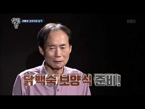 살림남  - 아빠와 강아지의 동거♥ 20181128