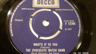 CHOCOLATE WATCH BAND - What's it to you