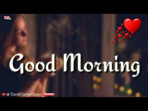 Good morning whatsapp video download love