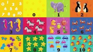 Bé Học Đếm Số Từ 1 Tới 10 - Vui Học Cùng Bé Bí Bo