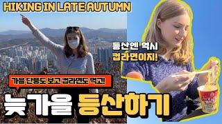 늦가을 등산엔 역시 컵라면과 김밥이지! 가을 단풍도 보고 컵라면과 김밥도 우아하게! 영상 뒤에는 800년된 은행나무도?