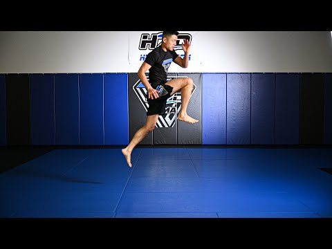 🔥🎥 First H2O MMA Online Training Video Is Up!