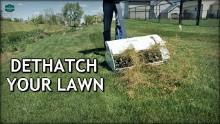 How To DETHATCH And FIX Your LAWN