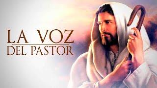 LA VOZ DEL PASTOR-El Catecismo-14