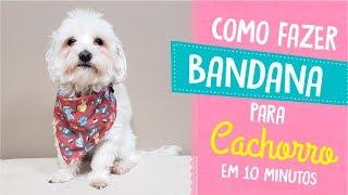 Como Fazer Bandana Para Cachorro Em Apenas 10 Minutos | Jê Pereira