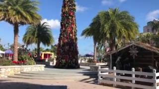 Vlog Nassau And Paradise Island, Bahamas