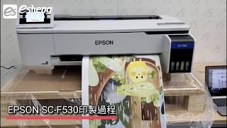EPSON SC-F530 24吋熱昇華數位印表機印製過程