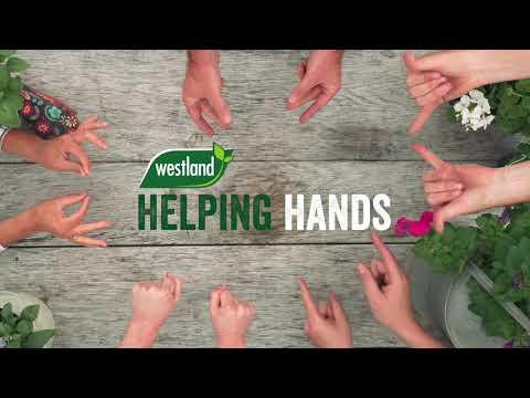 john innes no3 mature plant compost 10l Video
