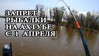 Запрет на вылов рыбы в астраханской области весна 2020