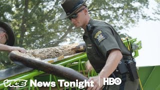 This Is What An Ivory Bust In New York City Looks Like (HBO)