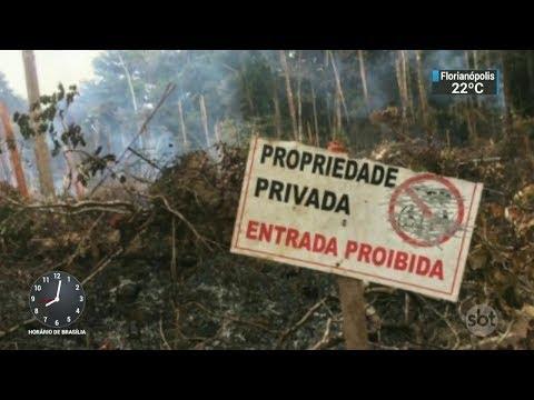 Grileiros ameaçam área de proteção ambiental no Pará