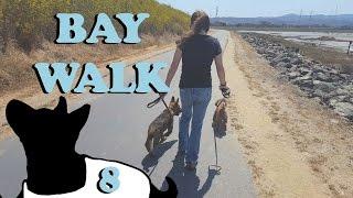 Bay Walk 2.0 E8