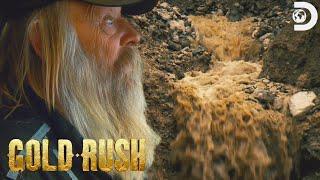 Tony Floods the Mega Cut!   Gold Rush