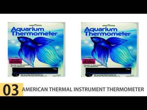 The Best Aquarium Thermometers – Top 5 Aquarium Thermometers Reviews