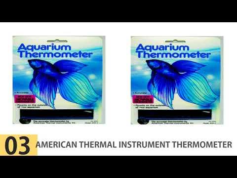 The Best Aquarium Thermometers – Top 5 Aquarium Thermometers Reviews