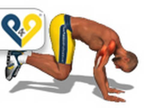 Le bodybuilding le papier peint pour le bureau