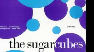 """Birthday"" - Sugarcubes (live)"