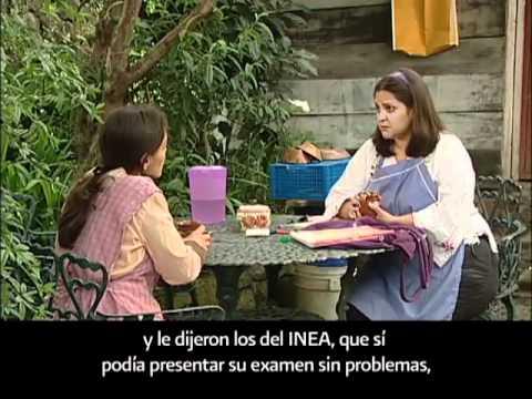 Aprenda a leer y escribir desde E.E.U.U. con el INEA.