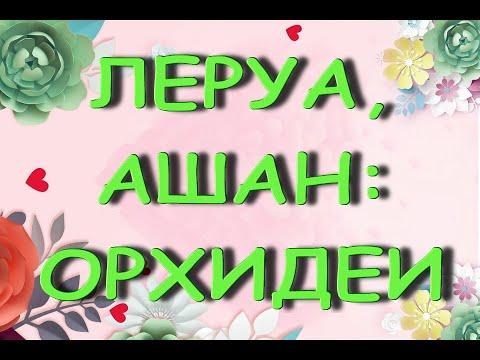"""Леруа:ЗАВОЗ чудесных ОРХИДЕЙ,09.04.21,ТЦ """"Космопорт"""",Самара."""
