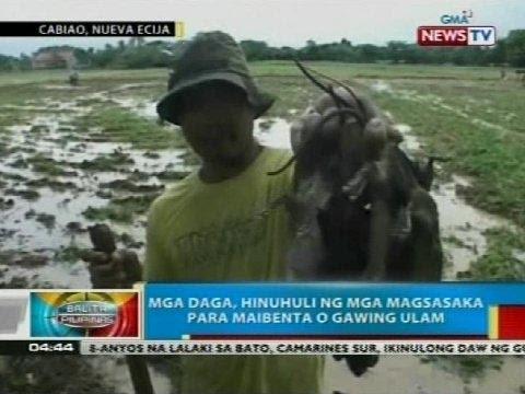 Giardia pambansang paggamot