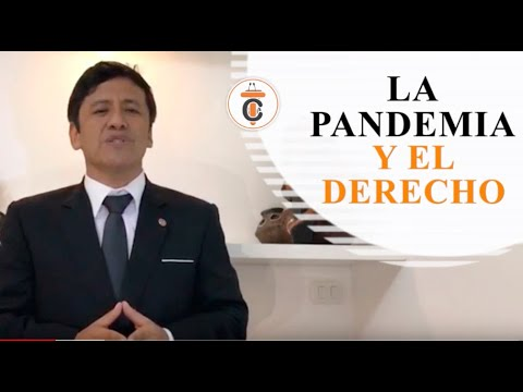 LA PANDEMIA Y EL DERECHO - Tribuna Constitucional 128 - Guido Aguila Grados