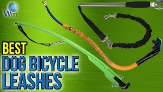 7 Best Dog Bicycle Leashes 2017