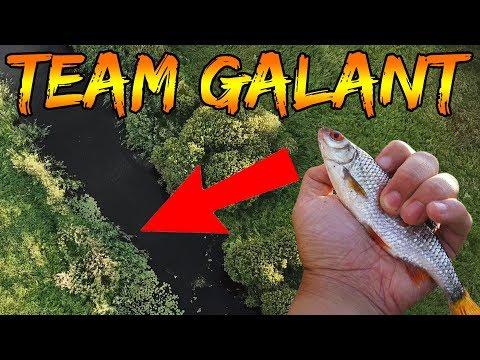 Skallefiskeri i å med KanalGratis