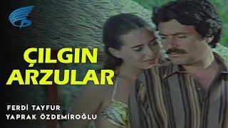 Çılgın Arzular - Türk Filmi
