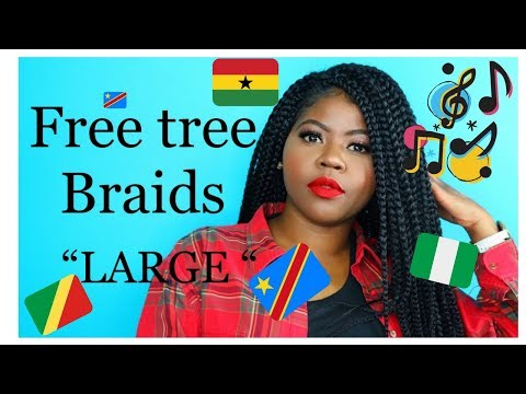 Download All About My Freetress Crochet Box Braids Video 3GP Mp4 FLV