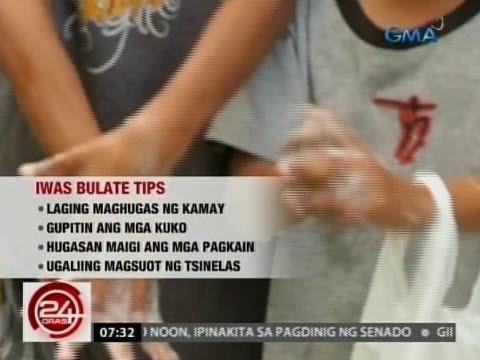 Itlog ng mga bulate sa cat feces