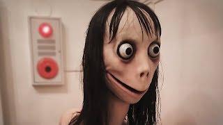 ЧТО ТАКОЕ МОМО WHATSAPP? #Momo