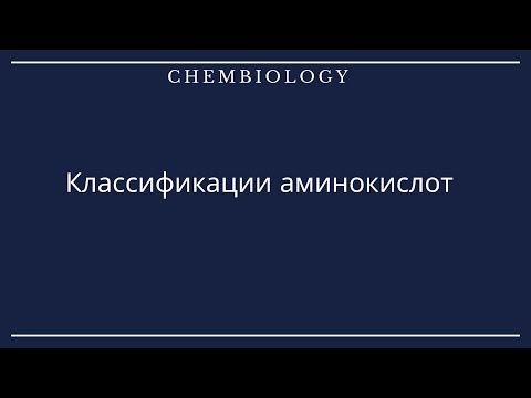 Биоорганическая химия. Классификации Аминокислот.
