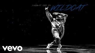 Chris Brown - Nobody Perfect (Audio)