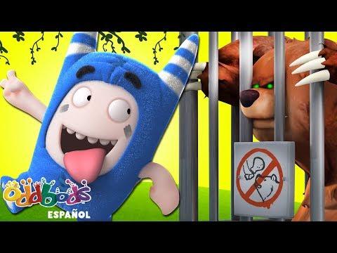 Oddbods   Devorado en el Zoológico   Dibujos Animados Graciosos Para Niños
