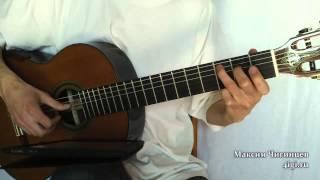Странники (в мире животных) на гитаре