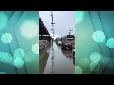 Chuva no Recife causa transtornos para motoristas e pedestres