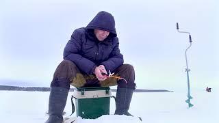 Рыбалка рыбинское водохранилище базы отдыха