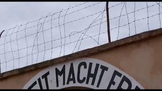 Trailer of Hitler Versus Picasso (2018)