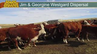 Jim & Georgine Westgard Cow Dispersal 2017