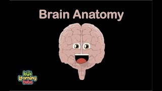 Human Body for Kids/Brain Song/Human Body Systems