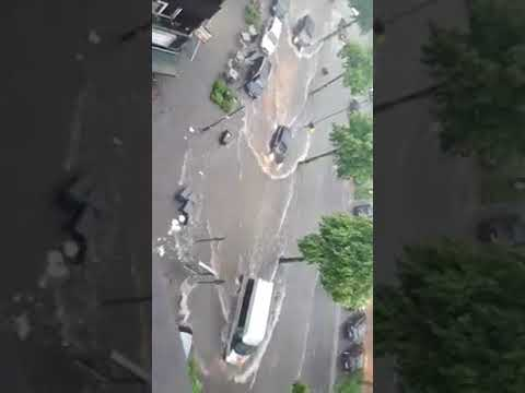 Der Krasnodarer Rand prajs die Blätter auf das Benzin
