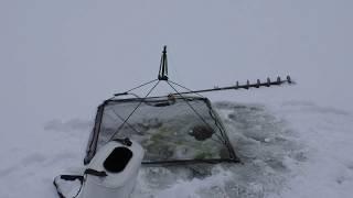 Паук для зимней рыбалки фото